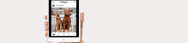 Instalando Instagram no iPad